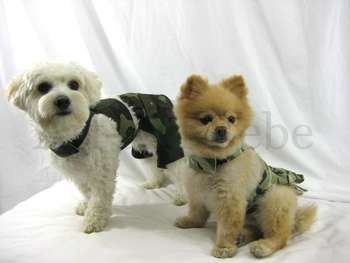 Camo Harness Dark